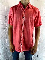 Сорочка чоловіча Welldone 123 з коротким рукавом коралова M - 2XL