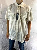 Рубашка мужская Welldone 37 с коротким рукавом молочная XL - 3XL