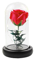 Роза в колбе с LED подсветкой UKC подарок ночник 16 см Красный hubaxfV69557, КОД: 1721656