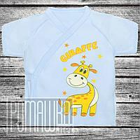 Хлопковая распашонка 56 0-1 мес кофточка короткий рукав на запах для малышей наружные швы КУЛИР 3171 Голубой