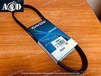 Ремень кондиционера Hyundai Accent III 1.4/1.6 2005-->2010 Dayco (Италия) 4PK812