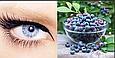 Черника + Лютеин 500 мг 120 капс (Billbery + Lutein 500mg) Diet Food, фото 5