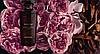 Парфюмированная Вода Rose Oud роуз уд 50 мл запаяна гарантия ив роше франция, фото 2