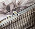 Полуторний комплект сатин люкс ТМ TAG S355, фото 3