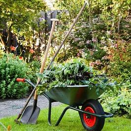 Комплексные удобрения для сада (деревья, кусты, газон)