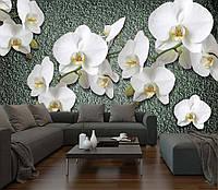 """Фото Обои """"Орхидеи на сером фоне"""""""