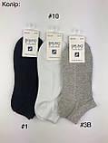 Шкарпетки чоловічі короткі BRUNO, р.40-45, фото 5