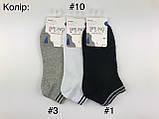 Шкарпетки короткі підліткові для хлопців BRUNO #TS-5202, р.36-40, фото 5