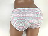 Труси жіночі бавовняні Janel, розміри F,М,L,XL трусы женские, фото 3