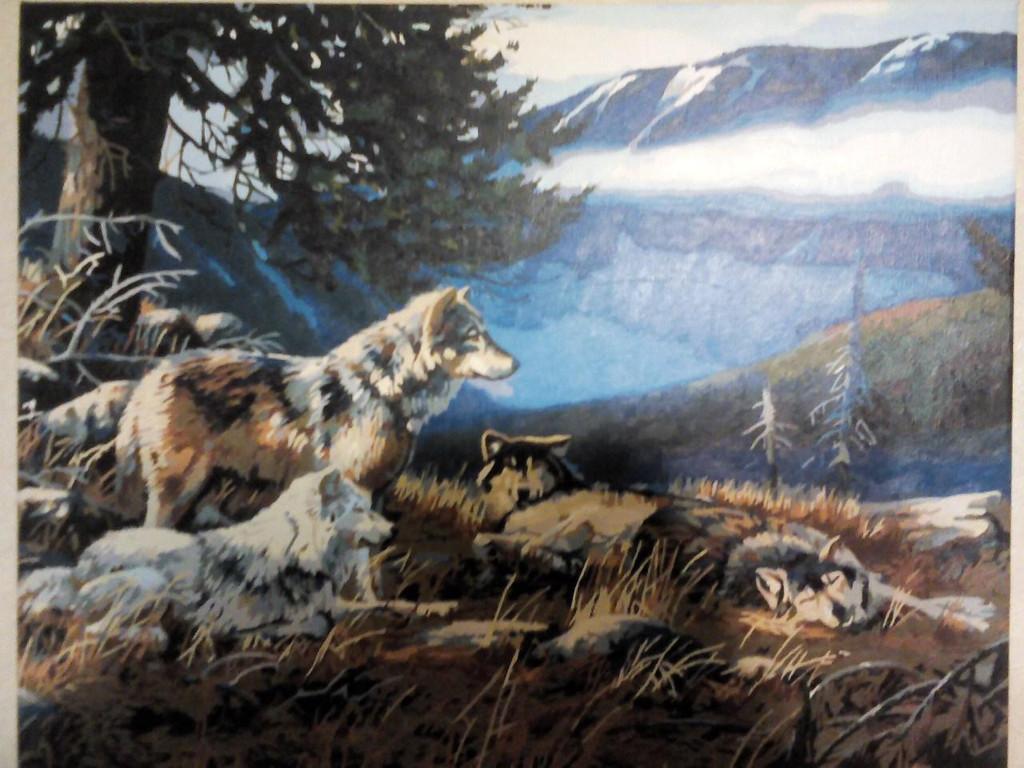 Волчье убежище VP122