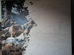 Волчье убежище VP122 2