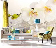 """Фото Обои """"Белая орхидея над водой"""", фото 1"""