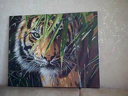 "Как рисовалась картина по номерам MENGLEI ""Амурский тигр"" MG1003 15"