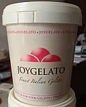 """Натуральная паста со вкусом грейпфрута """"Joypaste Pink Grapefruit"""", Италия (фасовка 1,2 кг), фото 2"""
