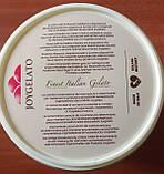 """Натуральная паста со вкусом грейпфрута """"Joypaste Pink Grapefruit"""", Италия (фасовка 1,2 кг), фото 3"""