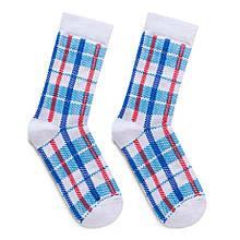 """Шкарпетки Дід Носкарь чоловічі 41-45 """"Клітчата Сумка"""" біло-блакитні"""