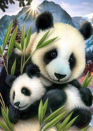 DM-105 Набор алмазной живописи Милые панды, фото 2