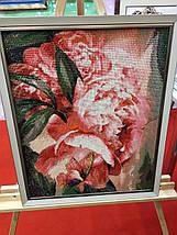 DM-184 Набор алмазной живописи Бабочка в пионах, фото 3