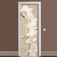 Наклейка на дверь Zatarga Орхидея беж 01 650х2000 мм Бежевый z180207 dv, КОД: 1804299