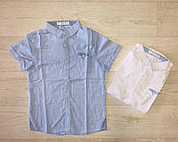 Рубашки на мальчика оптом, Buddy Boy, 8-16 лет,  № 2813, фото 1