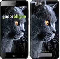 Силиконовый чехол Endorphone на ZTE A610 Красивый кот 3038u-433-26985, КОД: 1721959