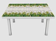 Наклейка на стол Zatarga Белые тюльпаны 600х1200 мм Z180219, КОД: 1804649