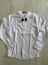 Рубашка приталенная для мальчиков  140,152см