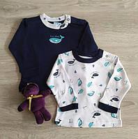 Кофта регланом для новорожденных Кашалот Польша Одяг на немовлят, фото 1
