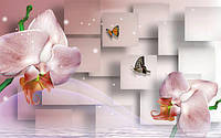 Фотообои две орхидеи текстуры , индивидуальный размер