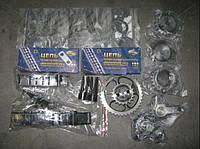 Ремкомплект ГРМ евро 3 406.1000115-10