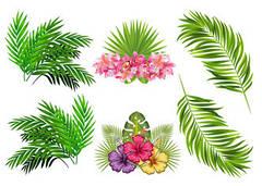 """Вафельна картинка """"Тропічні листя та квіти"""""""