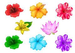 """Вафельна картинка """"Тропічні квіти"""""""