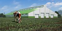 Разработка проектной документации для сельхоз комплексов. Птичники, коровники, свинофермы «под ключ».