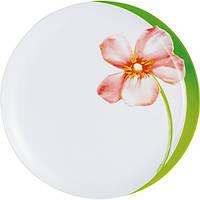 Набор тарелок 25 см Sweet impres J4655 (70-616)