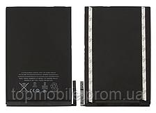 Аккумулятор iPad mini (4440mAh, Li-Ion Polumer 3.72V) (батарея, АКБ)