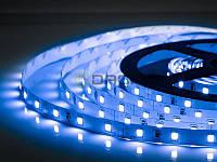 BIOM Лента светодиодная 3528-60/4,8W B синий, негерметичная, Biom