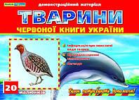 Демонстрационный материал Ранок 12107073У Животные Красной книги Украины 9789666241637, КОД: 902170