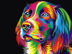Картины по номерам - Радужная собака