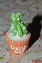 мініатюра кактус для лялькового будиночка