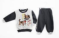 костюм детский трикотажный двойка для мальчика. Minibird 0340, фото 1