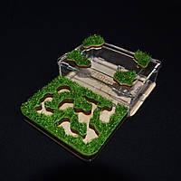 Формикарий Флора - муравьи Жнецы (M - 143х106х30 мм.), фото 1