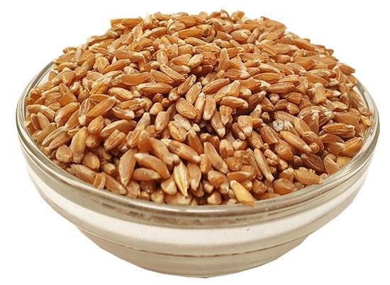 Полба зерно натуральное 1 кг, фото 2
