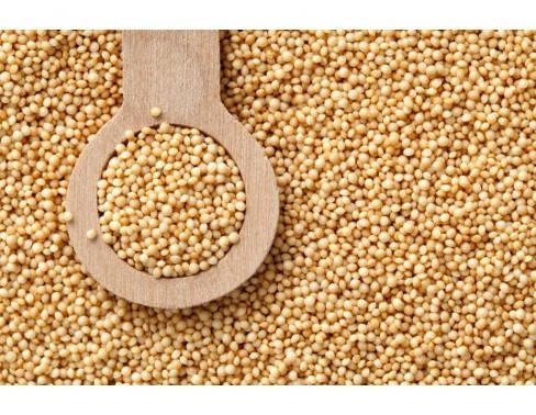 Амарант семена 200 г, фото 2