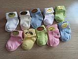 Носочки для новорожденных (0-6 месяцев) 12 шт, фото 2