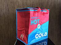 Сумка-холодильник DT-4244 (34*22*36см)