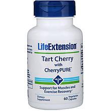 "Экстракт дикой вишни Life Extension ""Tart Cherry with CherryPURE"" 480 мг (60 капсул)"