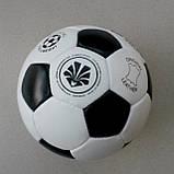Мяч кожаный Winner Classic, фото 7
