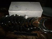 Вкладыши коренные Н2 А 41 АО20-1 (производство  ЗПС, г.Тамбов)  А23.01-116-41сб