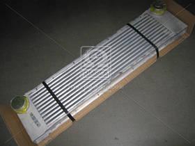 Радиатор охлаждения двигателя МЕРСЕДЕС VITO II W 639 (03-) (производство  Nissens) МЕРСЕДЕС, ВИAНО, 96729