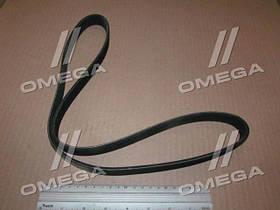 Ремень 6РК-1125 компрессора ВАЗ 2110 (про-во Пекар)  6РК1125